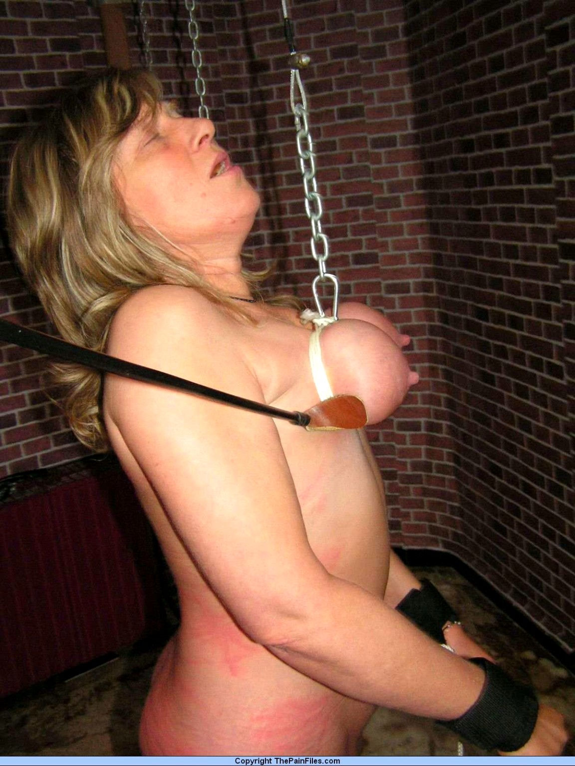 Babe Today The Pain Files Sophie B Full Breast Whipping -3592