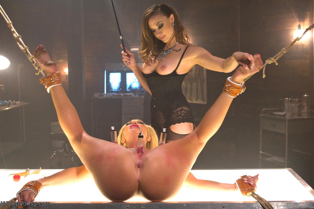 Whipped Ass Porn