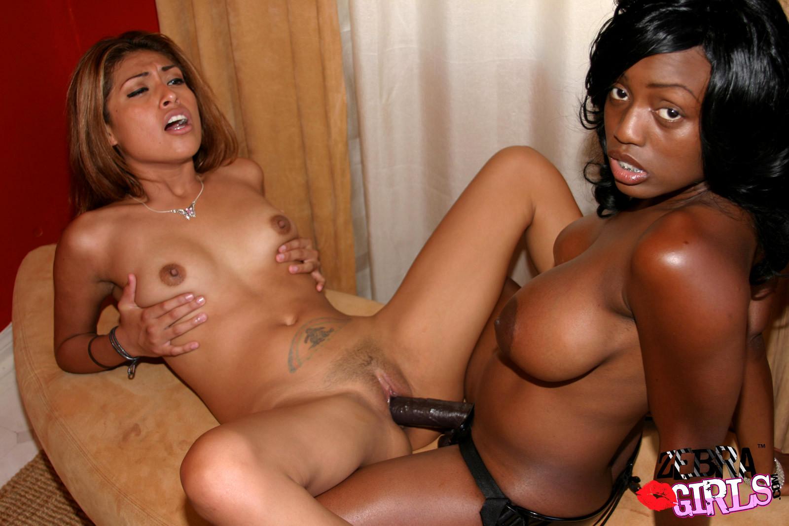 Babe Today Zebra Girls Jada Fire Hq Lesbian Vip Tube Porn Pics-3651