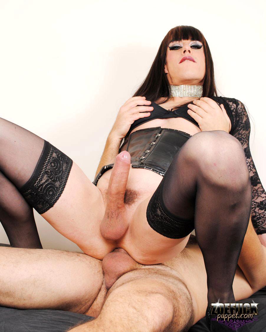 порно ролики секс трансвеститов в женском белье